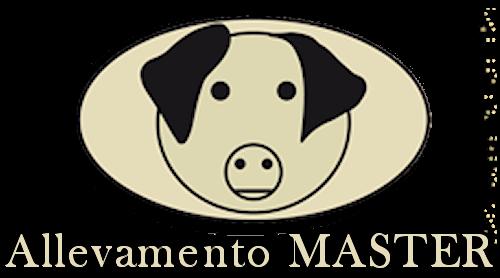 logo_trasparente_big2